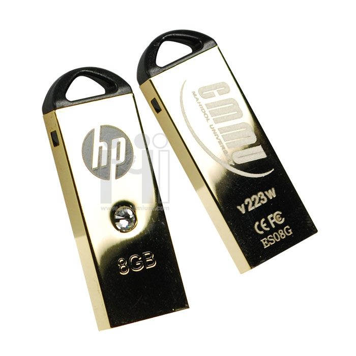 Flash Drive HP