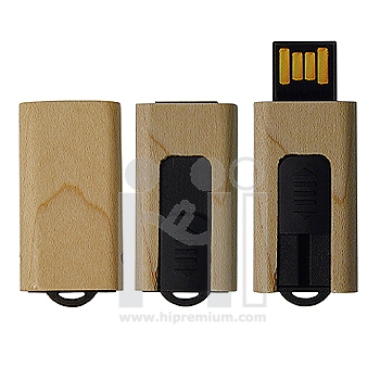 Wooden USB Flash Drive �Ū�������ԧ